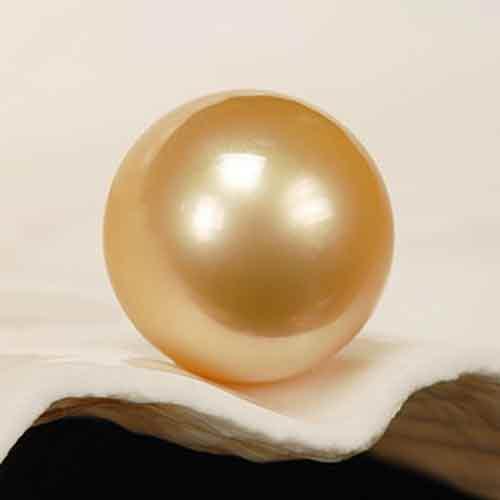 gold-pearl 金色珍珠,南洋珠-金珠